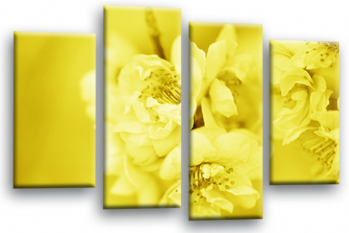 Floral Flower Wall Art Picture Yellow Grey Spring Blossom Print Split